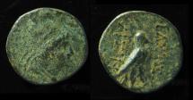 Ancient Coins - ARMENIA. Sophene. Arsames II. c. 230 BC. AE 17mm, Very Rare.