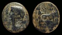 Ancient Coins - CLAUDIUS, AD 41-54. Æ 23 (10.12g) of Berytos, Phoenicia. c/m RR!