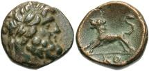 Ancient Coins - Pisidia, Komana, 1st Century BC, Lion pouncing, Rare and Superb
